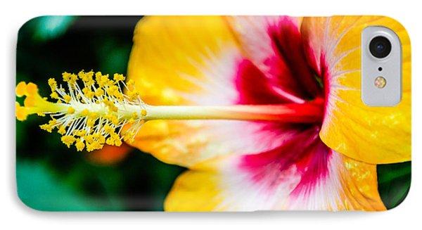 Flower Macro 2 IPhone Case