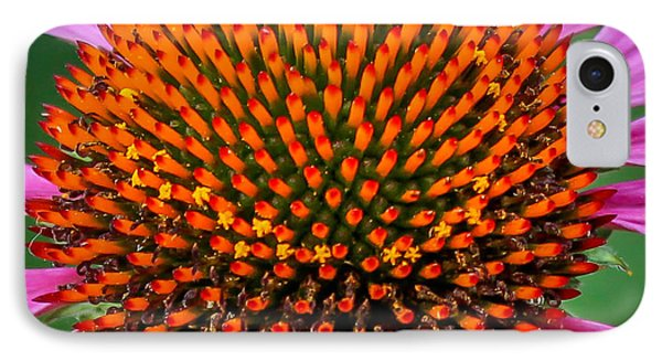 IPhone Case featuring the photograph Flower Macro  by Trace Kittrell