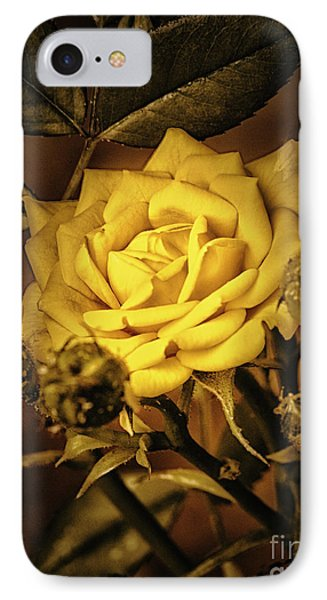 Flower Of Friendship  ... IPhone Case by Chuck Caramella