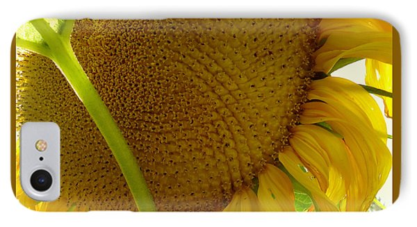 Flower Of The Sun IPhone Case by Peter Mooyman