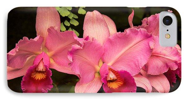 Flower - Orchid -  Cattleya - Magenta Splendor IPhone Case by Mike Savad