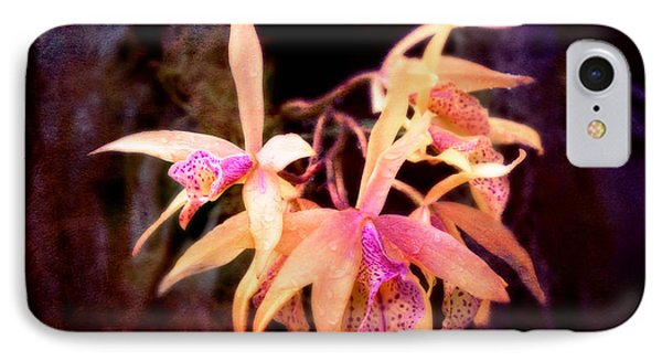 Flower - Orchid - Laelia - Midnight Passion Phone Case by Mike Savad