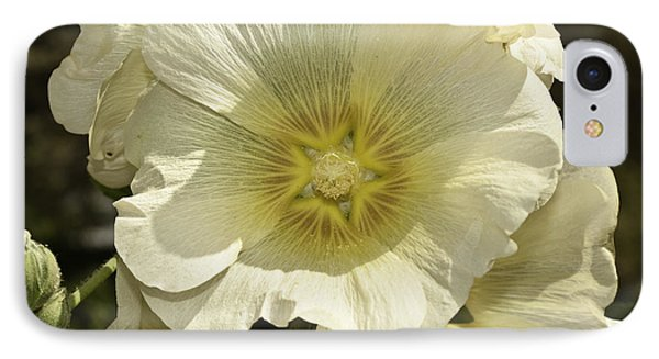 Flower Petals Of A White Flower IPhone Case by Ashish Agarwal