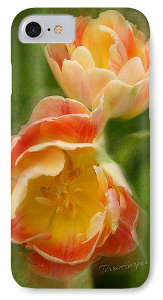 IPhone Case featuring the photograph Flower Power Revisited by Terri Harper