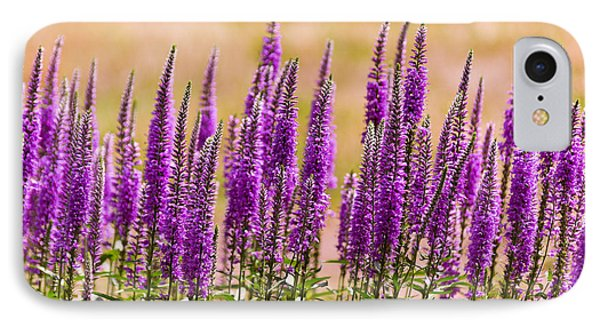 Flower - Speedwell Figwort Family - I Dream Of Lavender  Phone Case by Mike Savad