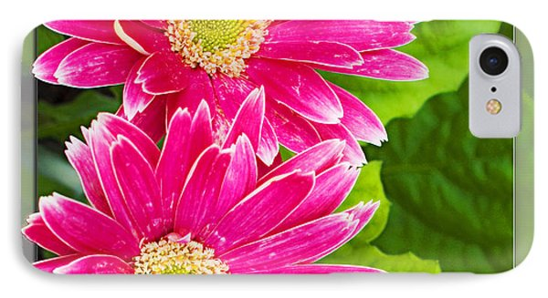 Flower1 IPhone Case