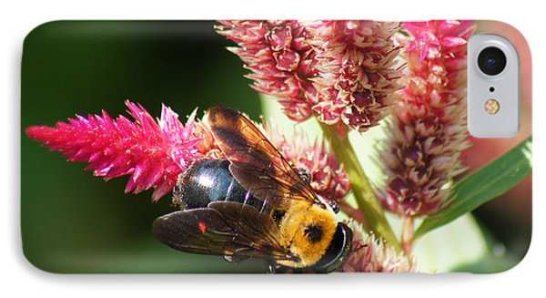 IPhone Case featuring the photograph Flowering Bumble Bee by B Wayne Mullins