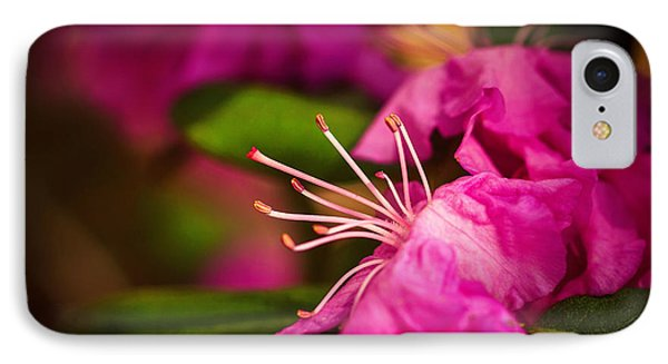 Flowering Bush IPhone Case