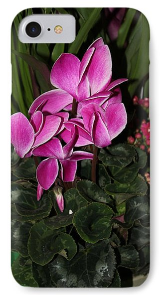 IPhone Case featuring the photograph Flowering Plant by Cyril Maza