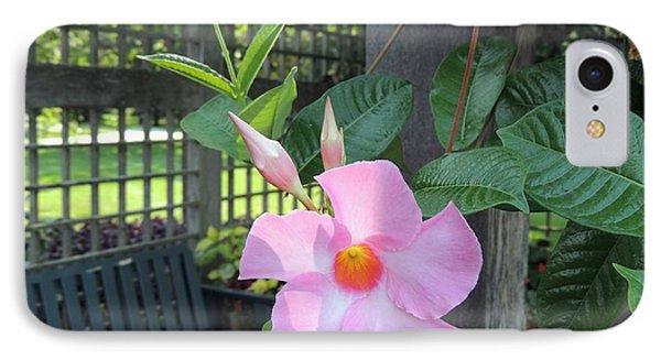 Flowering Vine IPhone Case by Teresa Schomig