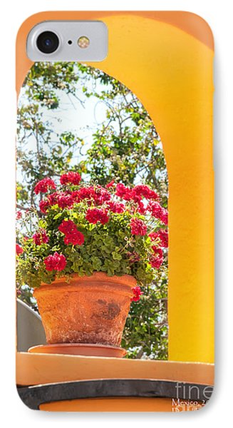 IPhone Case featuring the photograph Flowerpot In A Mexican Wall by David Perry Lawrence