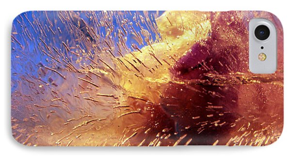 IPhone Case featuring the photograph Flowers In Ice by Randi Grace Nilsberg