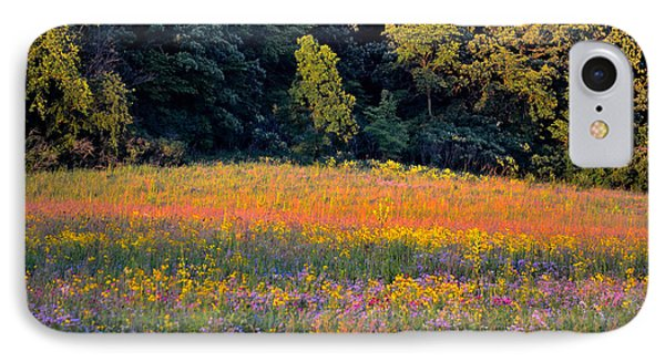 Flowers In The Meadow IPhone Case by Deb Halloran