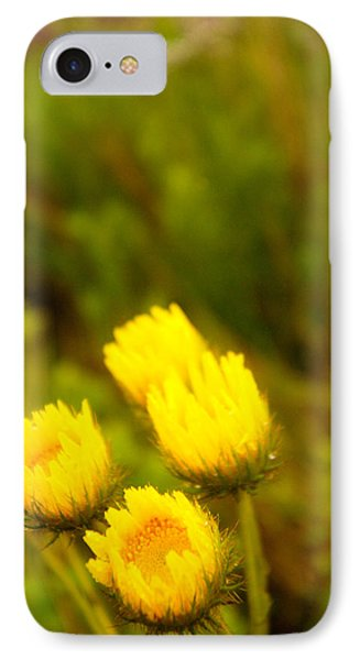 Flowers In The Wild Phone Case by Alistair Lyne