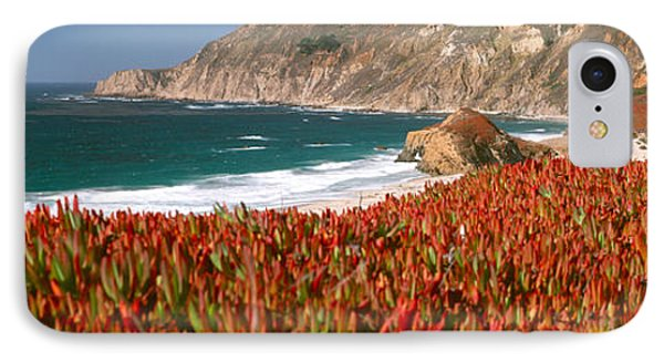 Flowers On The Coast, Big Sur IPhone Case by Panoramic Images