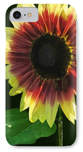 Flowers - Sunflower Ring Of Fire Phone Case by Susan Savad