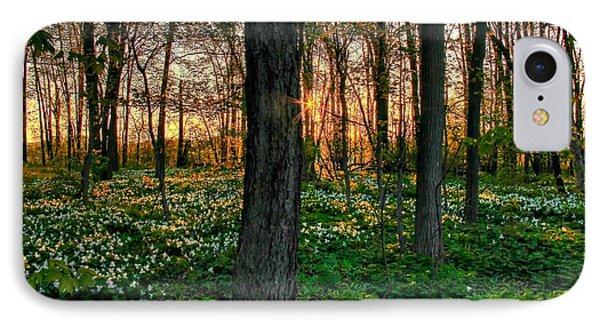 Flowery Sunset IPhone Case by Michaela Preston