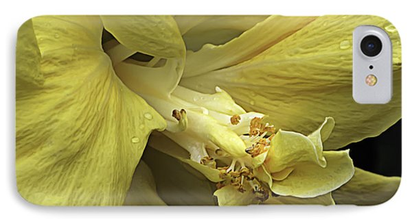 Flowing Petals Of The Chinese Hibiscus IPhone Case by Julie Palencia