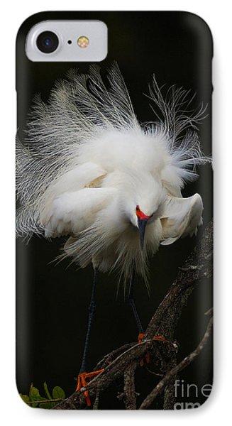 Fluffed Snowy Egret IPhone Case