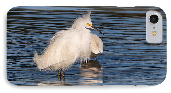 Fluffy Egret IPhone Case