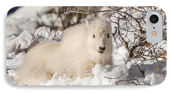 Fluffy Kid On The Mountain IPhone Case