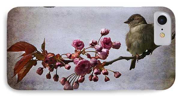 Fluffy Sparrow  Phone Case by Barbara Orenya