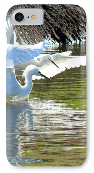 IPhone Case featuring the photograph Flurry by Deb Halloran