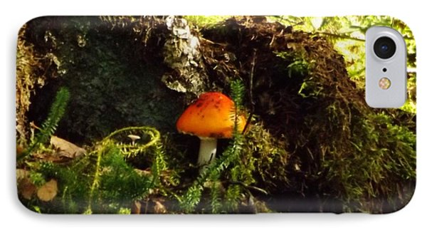 IPhone Case featuring the photograph Fly Agaric Mushroom On Forest Floor by Brigitte Emme