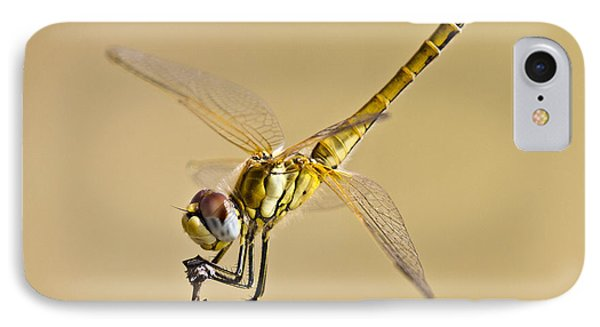 Fly Dragon Fly Phone Case by Heiko Koehrer-Wagner