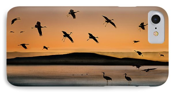 Fly-in At Sunset IPhone 7 Case