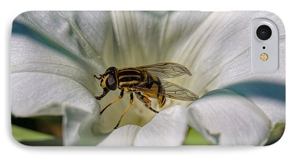 IPhone Case featuring the photograph Fly In White Flower by Leif Sohlman