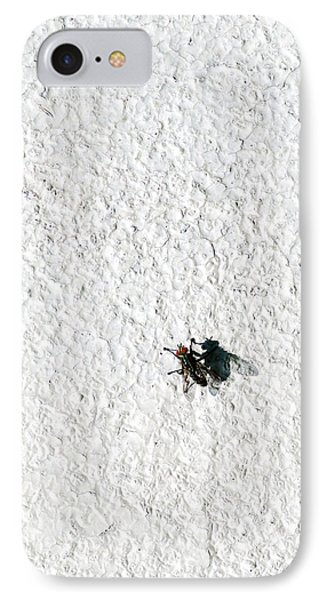 Fly On A Wall IPhone Case