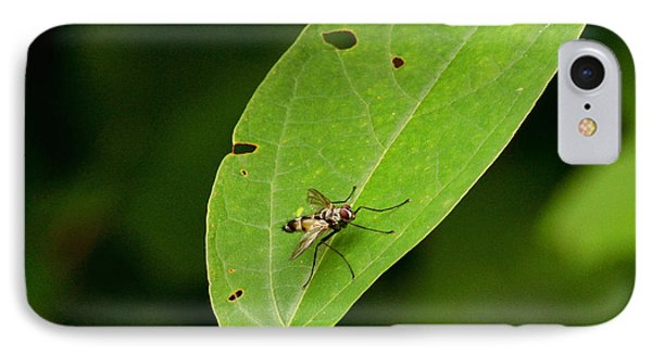 Fly On Leaf IPhone Case