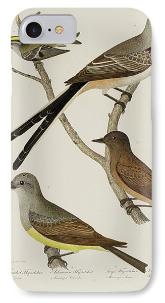 Flycatcher And Wren IPhone Case by British Library