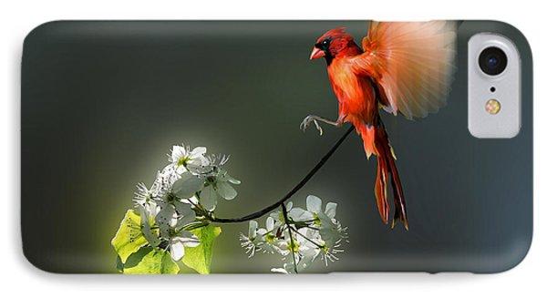 Flying Cardinal Landing On Branch Phone Case by Dan Friend