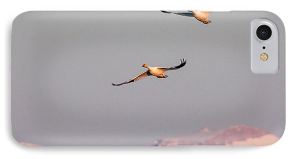 IPhone Case featuring the photograph Flying High by Jack Bell