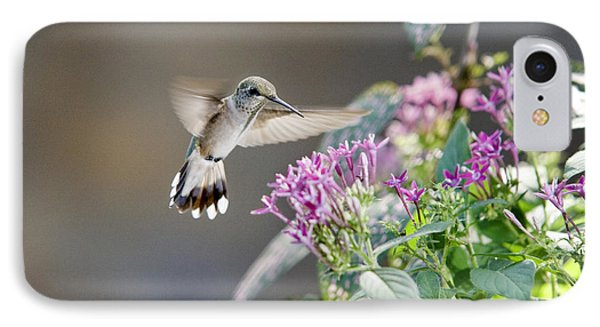 Flying In For A Morning Meal IPhone Case by Robert Camp