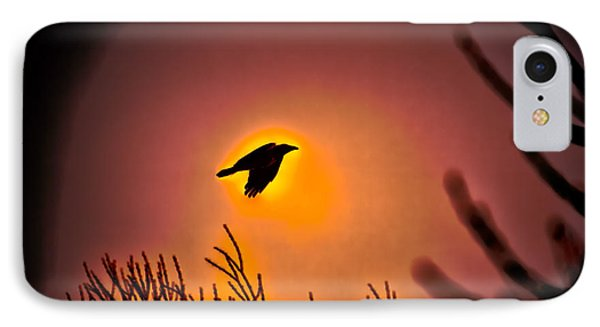 Flying - Leif Sohlman IPhone Case