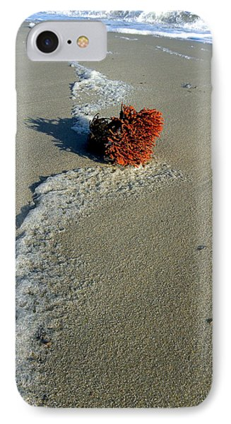 Foam And Seaweed On The Beach IPhone Case by Allen Beilschmidt
