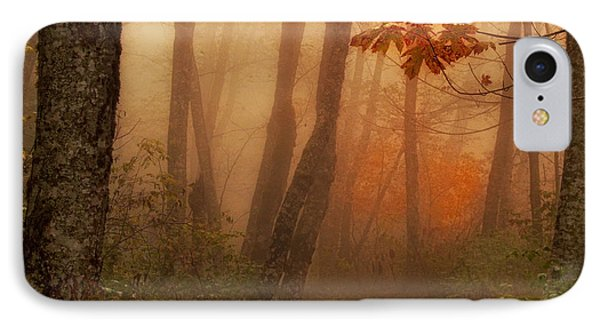 Foggy Autumn IPhone Case by Mary Jo Allen