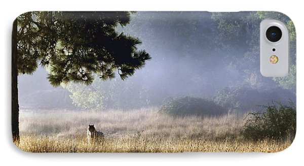 IPhone Case featuring the photograph Foggy Grotto by Julia Hassett