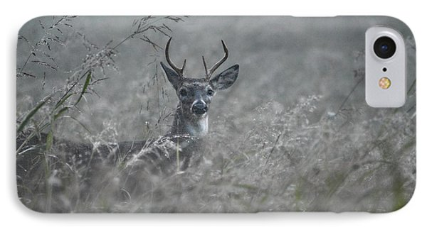 Foggy Morning Buck IPhone Case