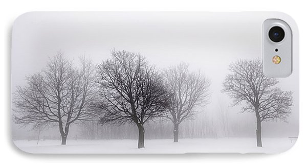 Foggy Park With Winter Trees IPhone Case by Elena Elisseeva