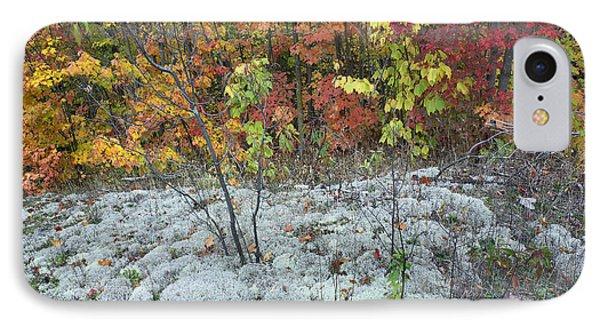 Foliage And Lichen Killarney Provincial IPhone Case