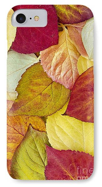 IPhone Case featuring the photograph Foliage Quilt by Alan L Graham