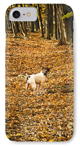 IPhone Case featuring the photograph Follow Me by Phil Abrams