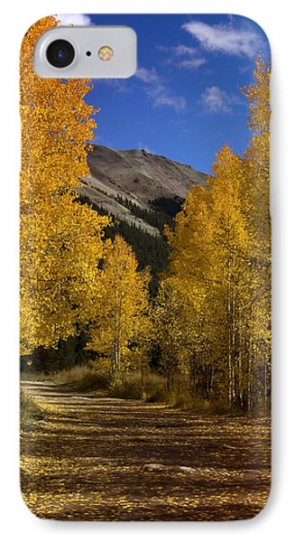 IPhone Case featuring the photograph Follow The Gold by Ellen Heaverlo