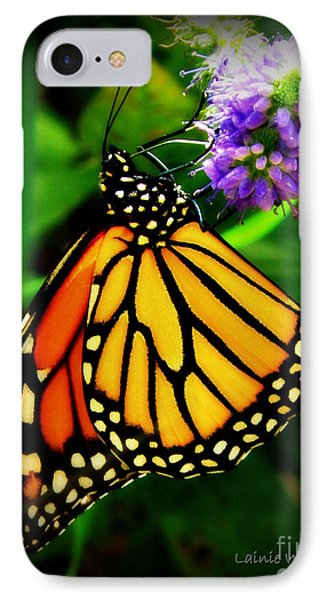 Food For Flight Phone Case by Lainie Wrightson