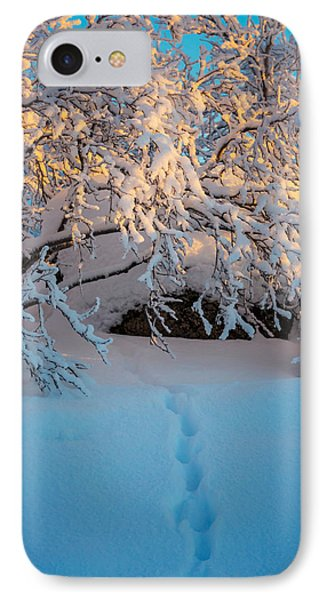 Foot Prints And Trees In The Frozen IPhone Case by Panoramic Images