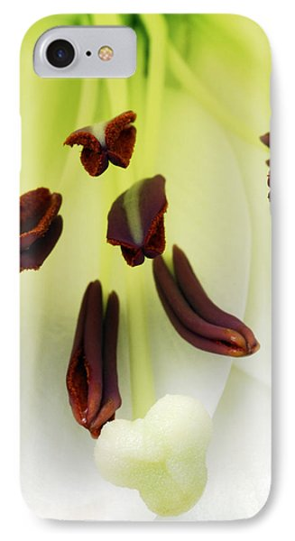 For The Love Of Lilies 1 IPhone Case by Wendy Wilton